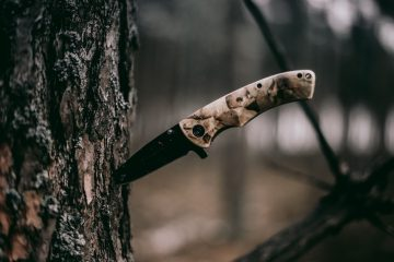 Knife in Tree